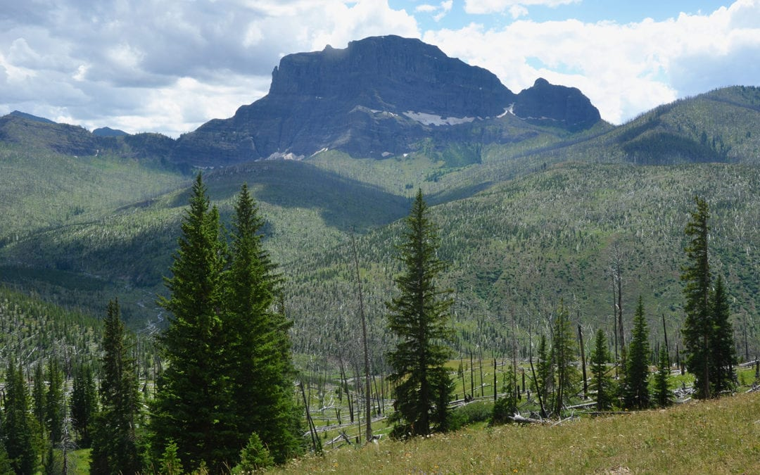 Yellowstone and Grand Teton National Parks: A Case Study of Mining Claim History in Four Adjacent National Forest Wilderness Areas