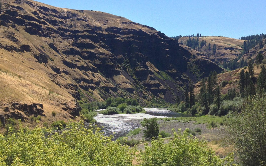 Monitoring Outdoor Recreation Use: The Umatilla National Forest, Wenaha Wild and Scenic River Corridor