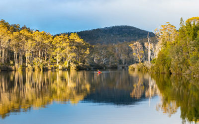 Wilderness Tourism: A Cautionary Tale from the Tasmanian Highlands