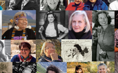 Beyond Secretaries, Hostesses, and Cooks: The Power, Humility, and Compassion of Women Who Battled to Save Wilderness