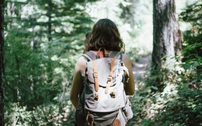 Wilderness Shared Stewardship: Exploring Partnerships Through Empathy