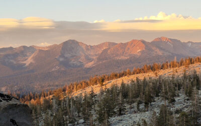 The Evolution Of Management Science To Inform Carrying Capacity Of Overnight Visitor Use In The Yosemite Wilderness